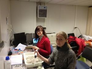 Lab work on board R/V Helmer Hanssen