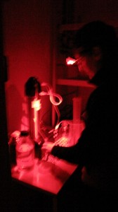 Red-light research in the lab